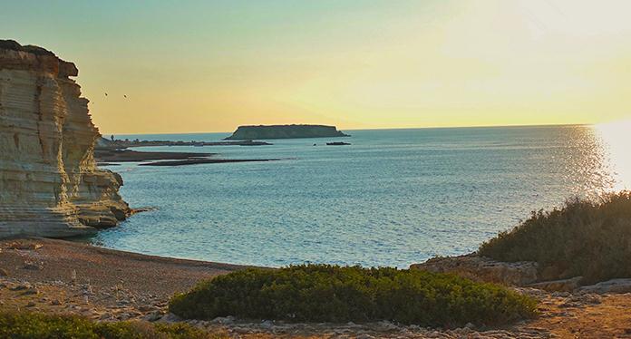 CFC Rules en Chipre